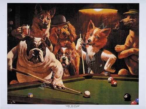 Dogs Billiard Poster - The Hustler